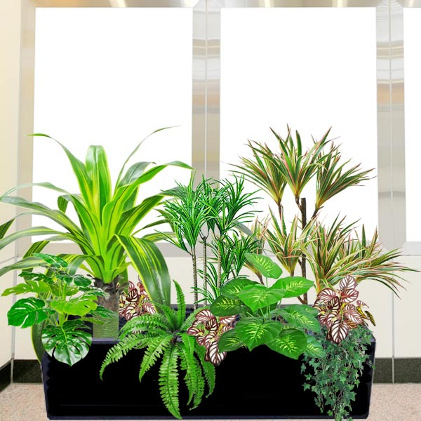 Artificial Dracaena Plants Group in Planter Box<br>(Total Hight: 100cm)