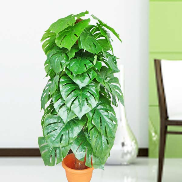 Artificial Monstera Plant 120cm Height