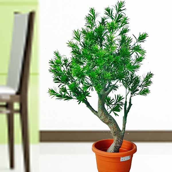 Artificial Pine Tree 100cm Height