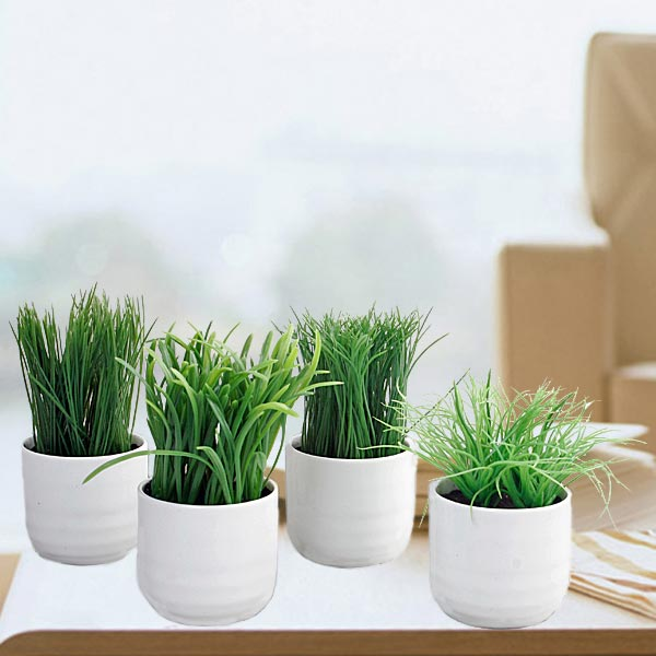 4 Mixed Artificial Grass Potted