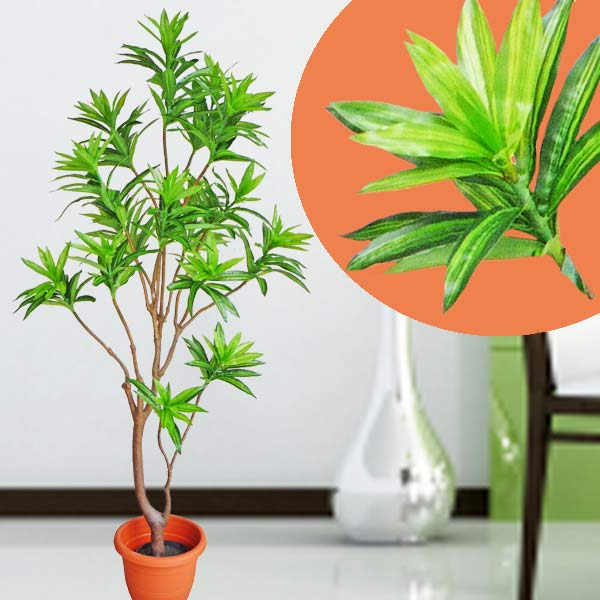 Artificial Dracaena Fragrans Plant 150cm Height