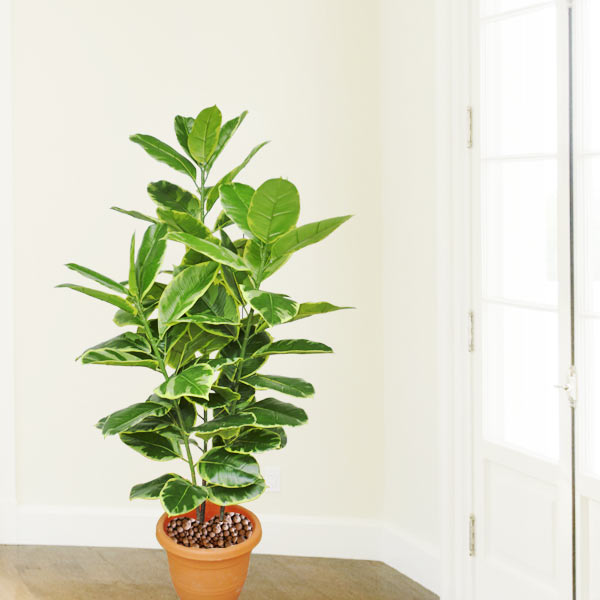 Artificial Ficus Benghalensis Plant 110cm Height