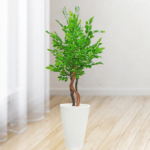 Artificial Green Ficus Tree 145cm Height
