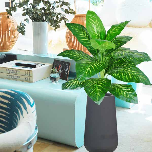 Artificial Dieffenbachia Plants In Tall Planter Pot 160cm Height