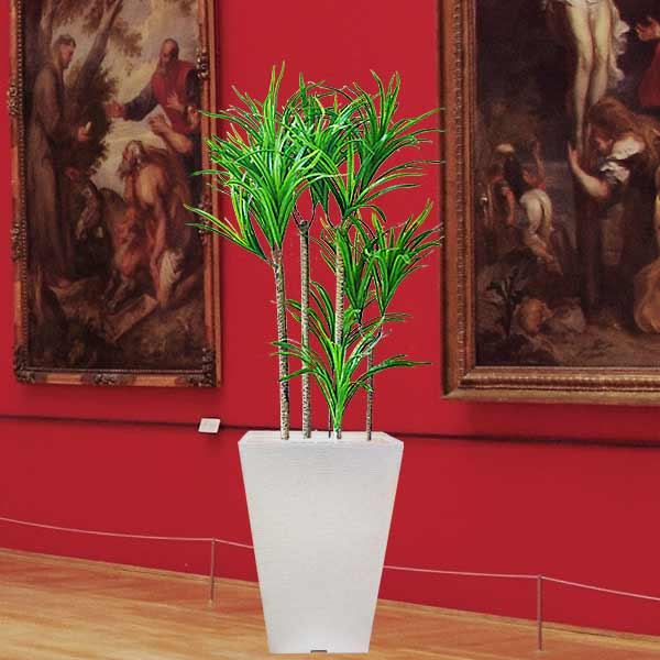 Artificial Plant - Dracaena marginata 100cm Height