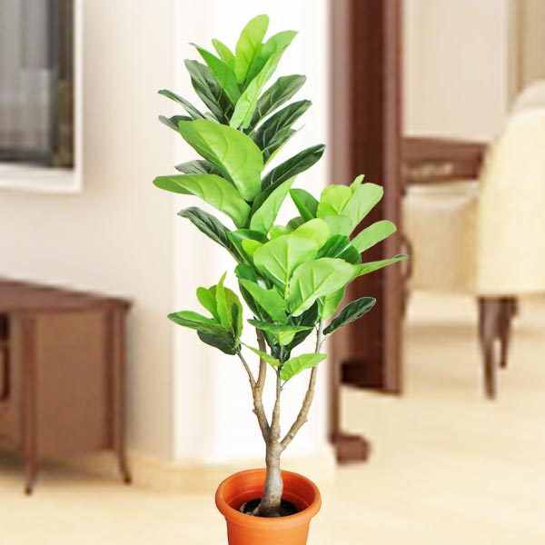 Artificial Fiddleleaf Fig Tree 4 Feet Height