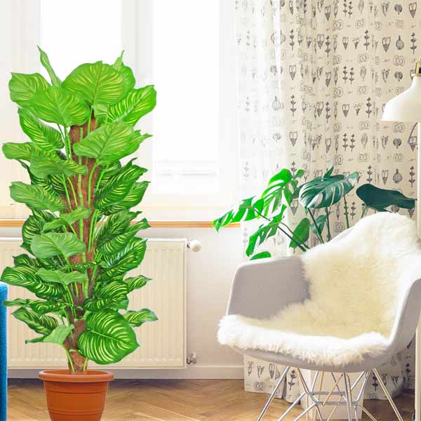 Hyperboles Artificial Variegated Money Plant 5 Feet Height