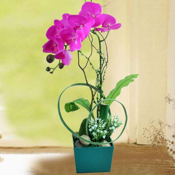 Artificial Phalaenopsis Orchid Arrangement AT074