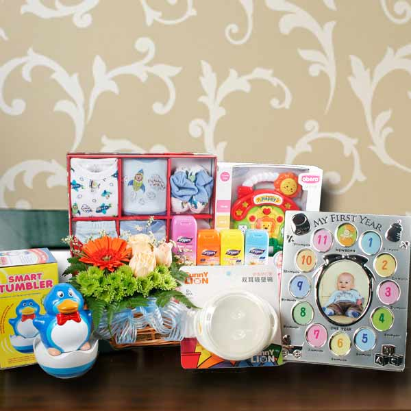 Baby Boy Gift Basket BB019