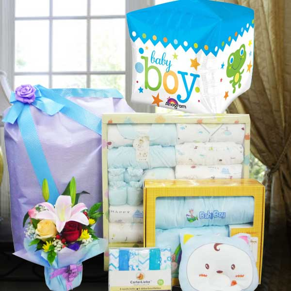 Baby Boy Hamper BB071