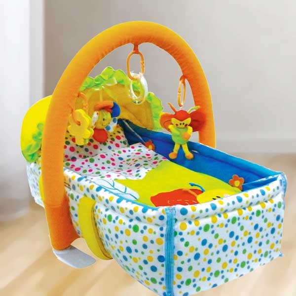 2-in-1 Baby Moses Basket & Playgym Mat