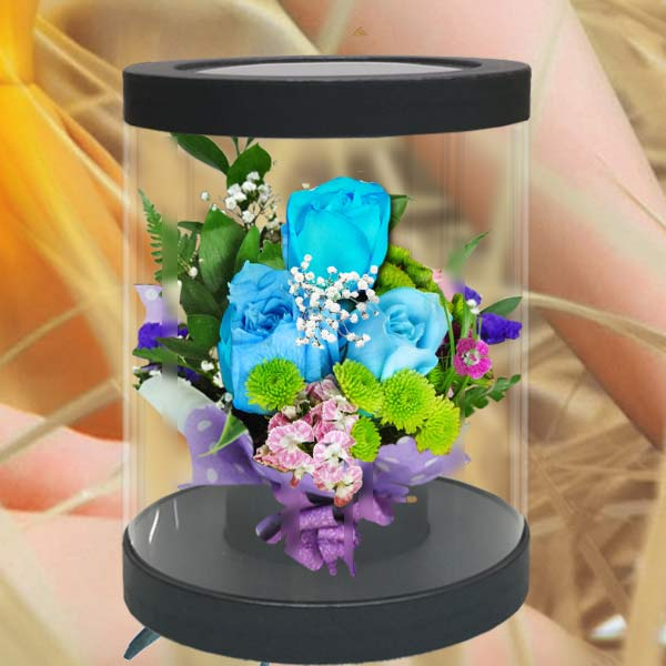 3 Blue Roses in Cylinder Gift Box 20cm Height
