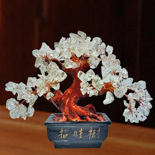 Clear Quartz Feng Shui Crystal Gem Tree 15cm Height
