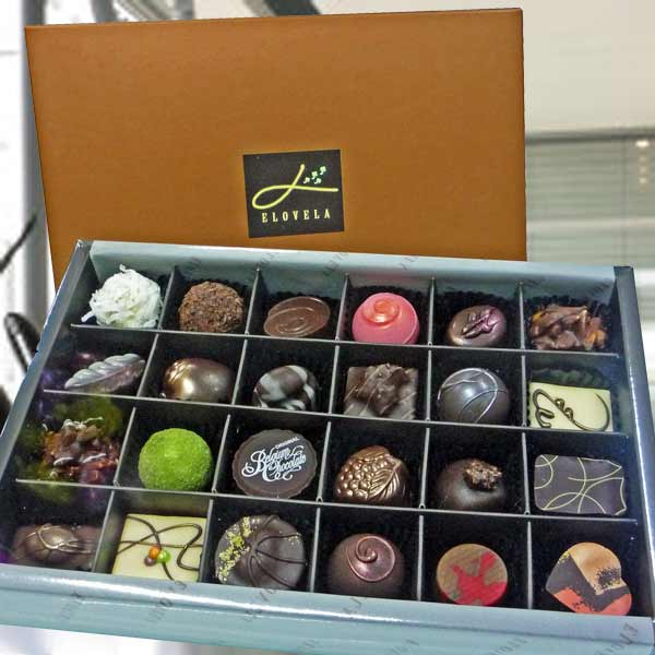 24 pcs Praline Gourmet chocolates