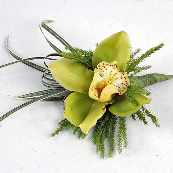 Cymbidium Orchid Boutonniere ( Add-On Only, No Delivery )