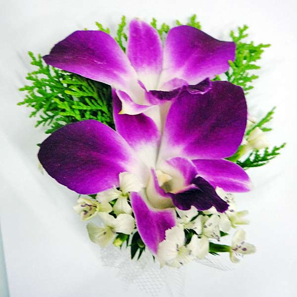 Dendrobium Orchid Boutonniere ( Add-On Only, No Delivery )