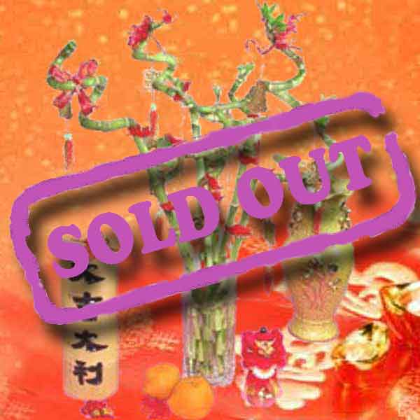 DIY Chinese New Year decor Ang Pow Carousel Lantern