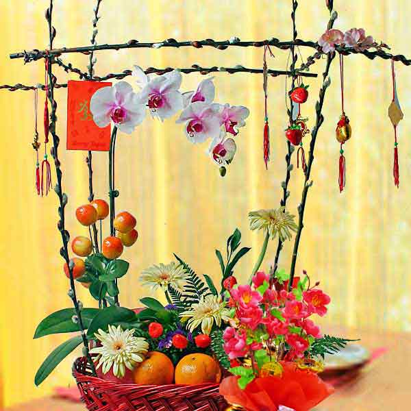 2 Oranges With Phalaenopsis Orchid Basket Arrangement For New Year