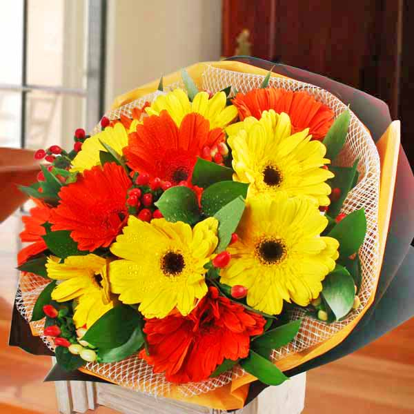12 Mixed Gerbera Hand Bouquet