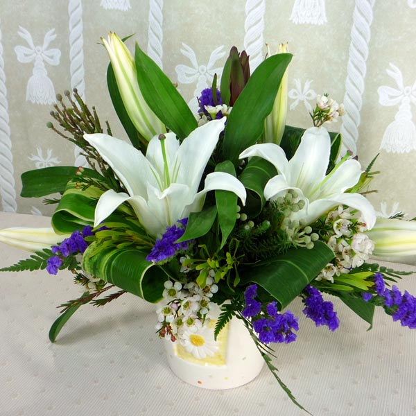 Lilies / Calla Lily