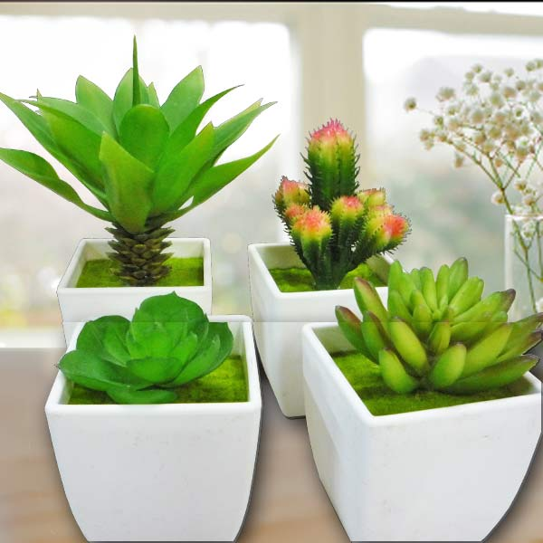 4 Potted Artificial Mini Succulent plant