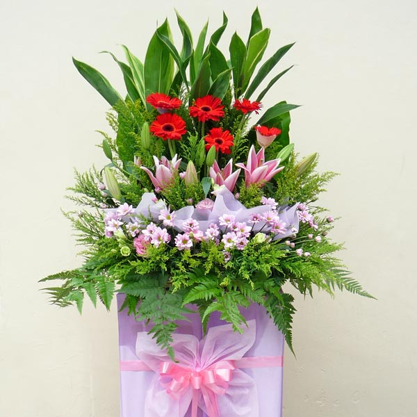 Pink Lily & Red Gerbera on Pink Box Stand (6 Feet in height)