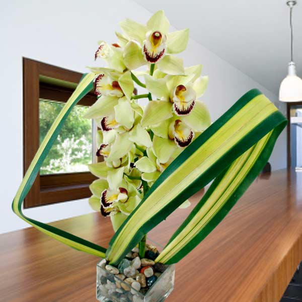 Green Cymbidium orchids with Glass Vase