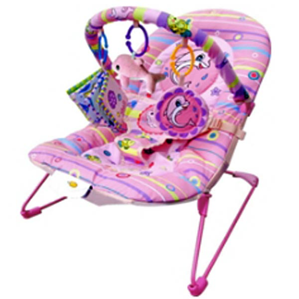 Pink Dolphine Bouncer