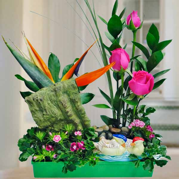 Hot Pink Roses & Bird Of Paradise Flower Arrangement