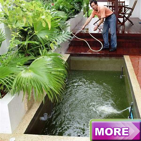 Fish Pond Maintenance
