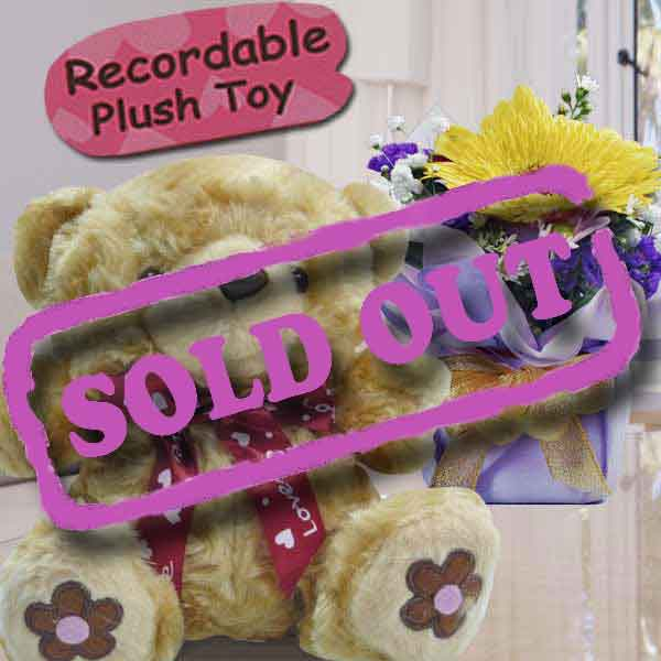 "6"" Bear with Voice Recorder & Gerbera"