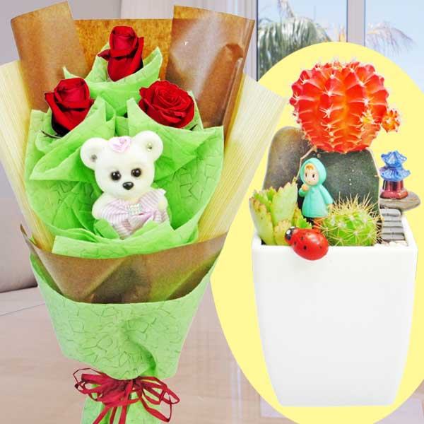 Mini Cactus Garden With 3 Red Roses & Bear Hand Bouquet