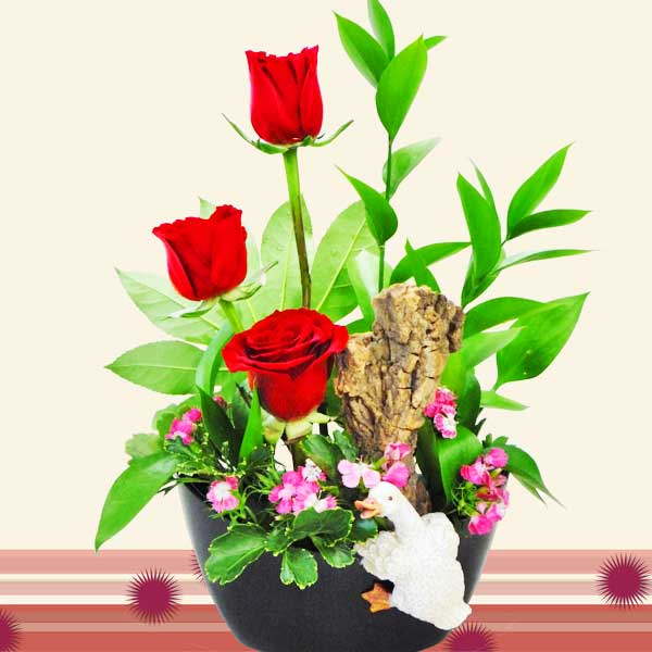Mini Swan & 3 Red Roses in Plastic Vase.