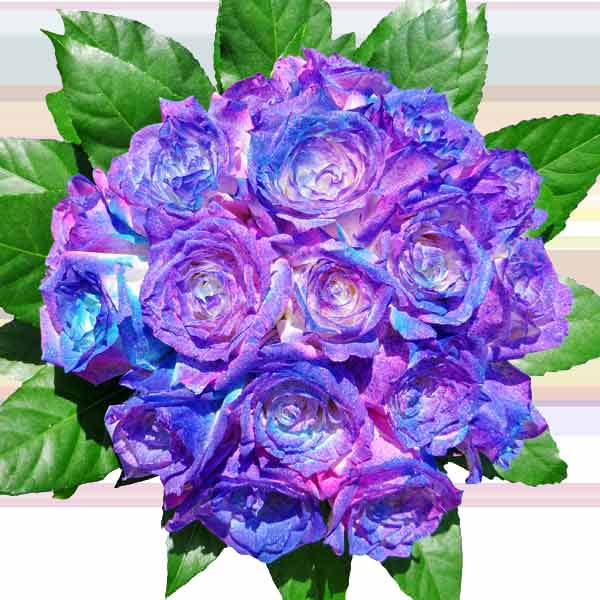 18 Lavender Pink Metalic Spray Color Roses Hand Bouquet
