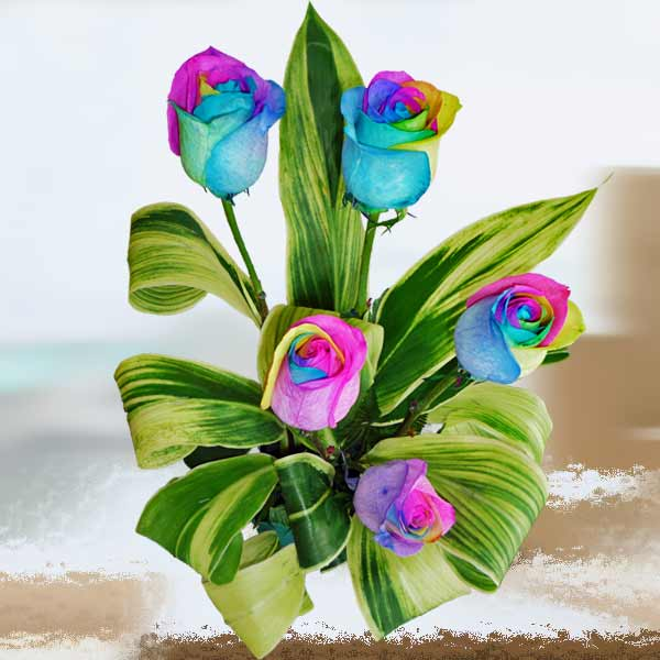 5 Rainbow Roses Small Table Arrangement