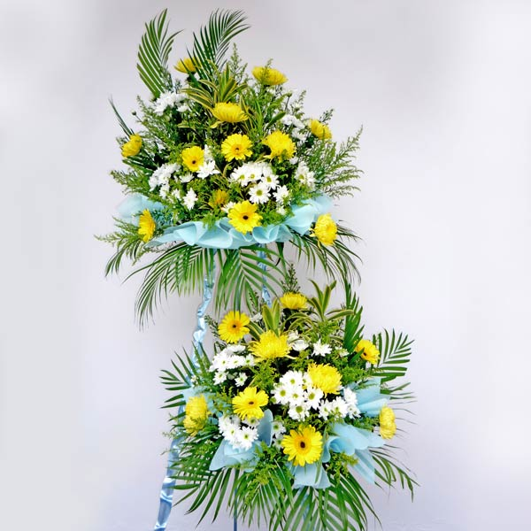 Chrysanthemum yellow with white pompom 2 tiers