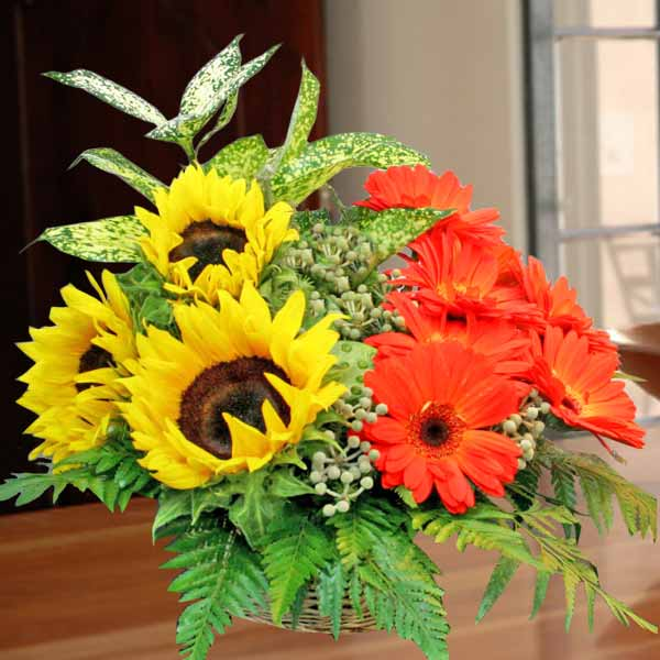 3 Sunflowers with 8 Gerberas Table Arrangement