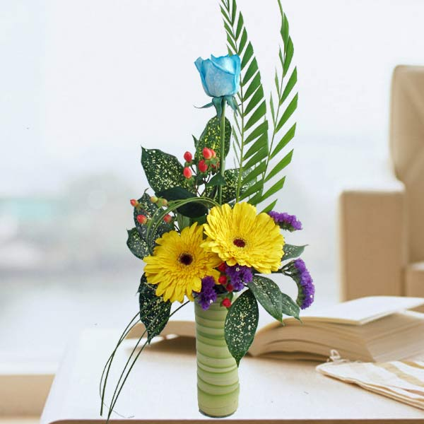 Blue Rose and Yellow Gerbera Arrangement