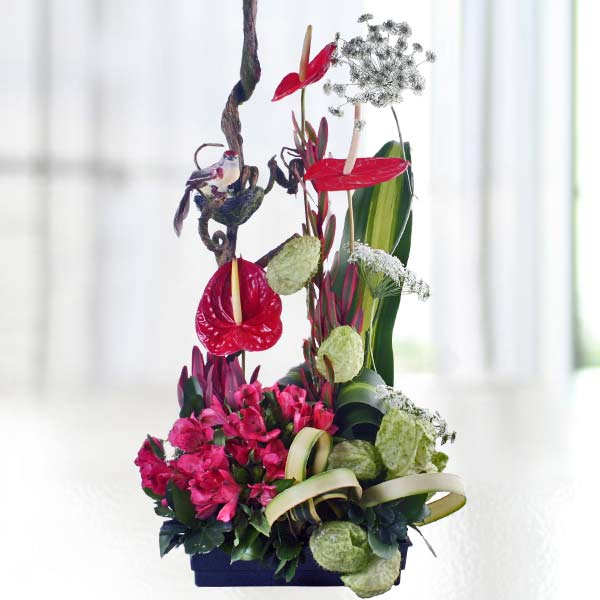 Red Anthurium & Astomelia Arrangement