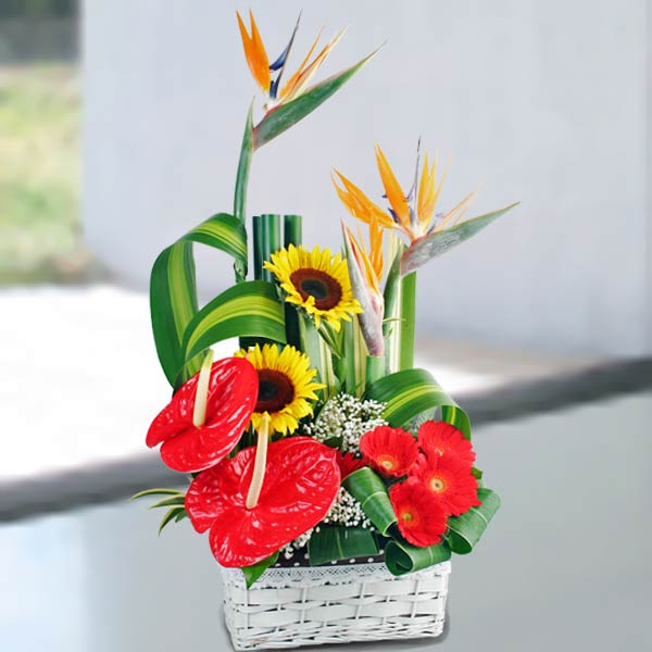 Bird Of Paradise & Anthurium Flowers Table Arrangement