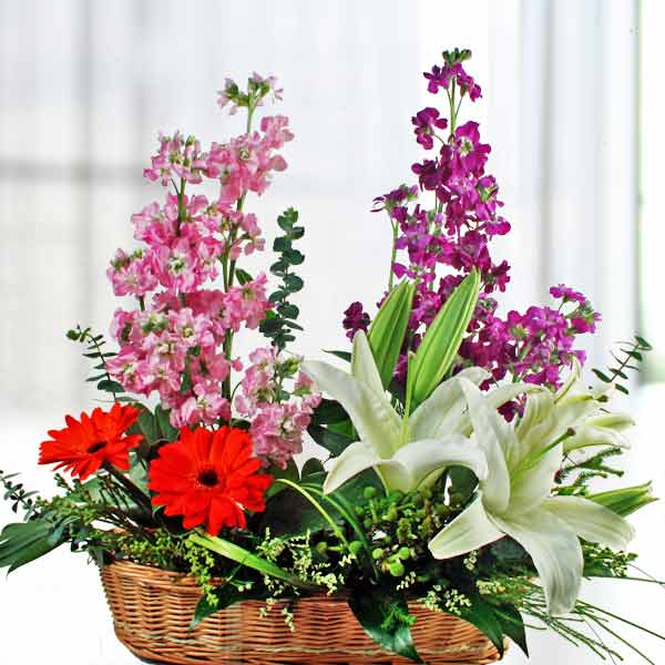 Matthiola, Lily & Gerbera Table Arrangement