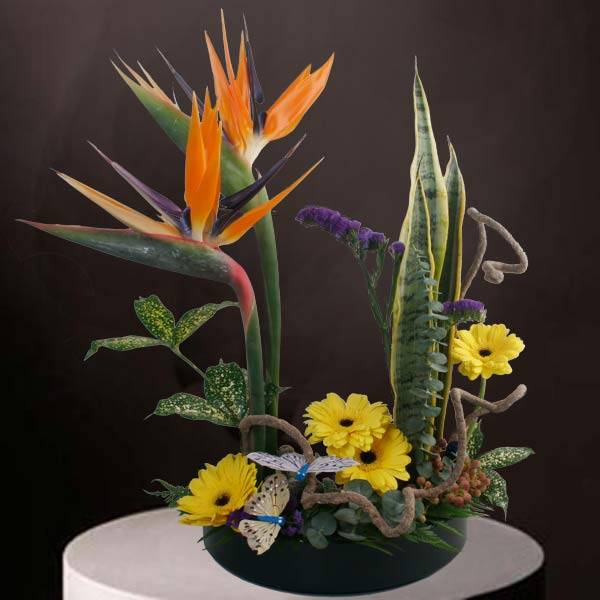 Bird of paradise ikebana Arrangement