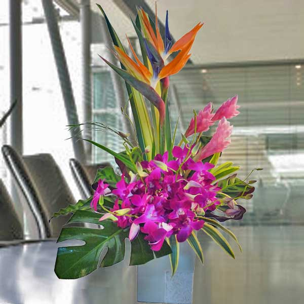 Bird of paradise & Orchid Flowers Arrangement