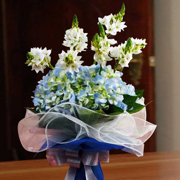 Ornithogalum Flowers & Blue hydrangeas Bouquet