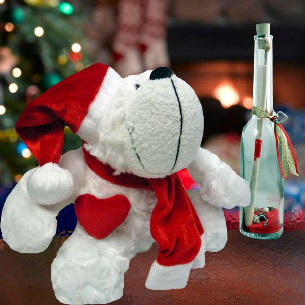Christmas Bear 8 inches & Message in a Bottle