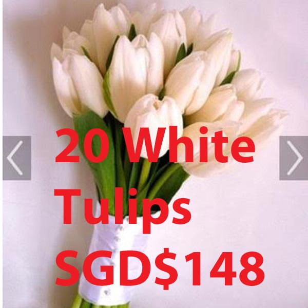 20 White Tulips Hand Bouquet Customied order SGD$148
